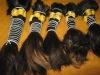 100% human hair machine made weft