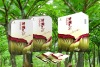 100% quality guaranteed natural konjac dietary fiber powder,meal replacement