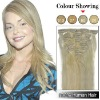 18 Inches 7pcs Clip-in Human Hair Extensions Straight (#60 Platium Blonde) SH1419