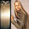 2011 Newest Style Cheap 100% human hair clip on hair extension