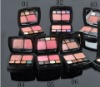 2011 makeup ladies brand cosmetics blush blusher
