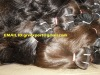 "28"" indian virgin remy human hair weft"