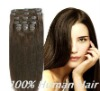 Beauty 100% human hair clip in hair extension