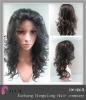 Brazilian Hair human hair wig
