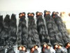 Brazilian virgin Indian remy human hair weaving extension