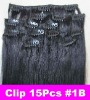 Clip In Remy Hair Extensions
