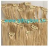 Clip In Remy Human Hair Extension Sets
