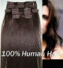 Clip-in Human Hair Extension Hair Grade AAA