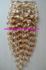 Clips Hair Extension/clips in hair extension/clips hair