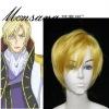 Code Geass Schneizel El Britannia Cosplay/doll/party synthetic wig