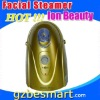Facial Steamer facial steamer consumer reports beauty products