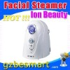 Facial Steamer natural health and beauty tips