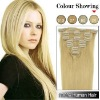 Fashion Clip-in Human Hair Extensions Top Quality