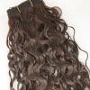 Fashion style curly brazilian hair wefts