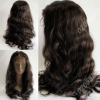 Grade AAA brazilian virgin hair front lace wigs