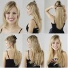Indian remy hair clip in hair extension