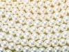Instant pearl powder