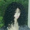 Kinky Curly Lace Wigs for African Americans