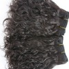 New arrival curly virgin human hair