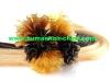 Pre bonded hair extension/keratin hair extensions
