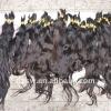 QUALITY bresilienne hair