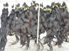 QUALITY raw human hair