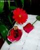 Rose essential oil    Rose Maroc