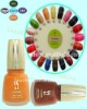 Stylish Colorful Matte Nail Polish