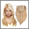 Synthetic Ladies Hair piece