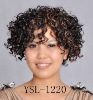 Synthetic hair AFRO Curly wigs YSL-1220