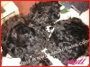 Unpreocessed Chinese Virgin Remy Hair Extension Hair Bulk