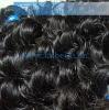 Virgin brazilian hair weft