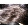 homeage brown brazil virgin hair human weave
