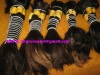 indian hair machine weft