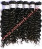 indian remy virgin hair extension