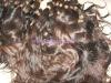lady's fantastic looking,AAAA grade,100% human hair ,hair extension,wigs