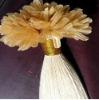 natural U-tip hair Keratin hair extensions