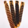 prebonded u-tip nail remy human hair extension