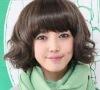 short hair wigs/women's short hair wig/Liu Qi/big waves/synthetic wig/fashionable hair