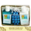 shower gel-Vanilla Honey Bath Set in Basket