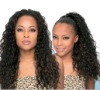 top quality 100% indian human hair virgin hair full lace wigs