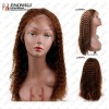 wigs human remy hair