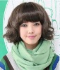 women's short hair wig/short curls/fashion wig/lace wig/Liu Qi/synthetic wig